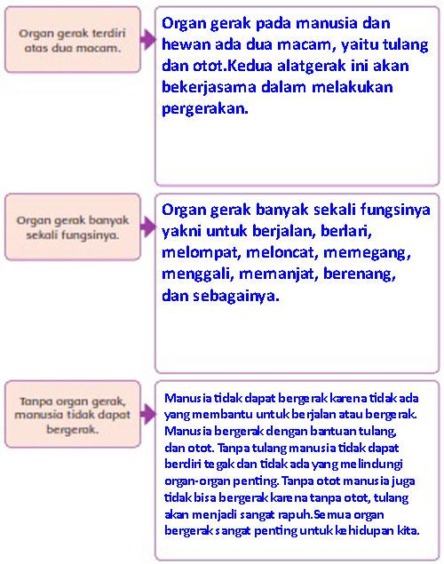 Rangkuman Tema 1 Kelas 5 Organ Gerak Hewan Dan Manusia : rangkuman, kelas, organ, gerak, hewan, manusia, Materi, Kunci, Jawaban, Tematik, Kelas, Subtema, Halaman