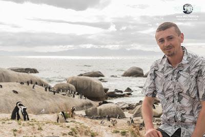 Arkadij WELTREISE. Die Pinguine in Kapstadt hautnah erleben. www.WELTREISE.tv