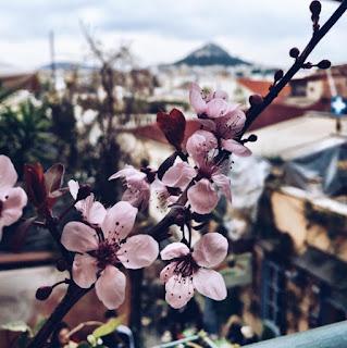 Весна в Афинах