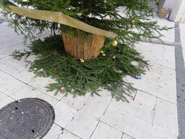 Grave atto vandalico in Piazza Municipio: rubate e frantumate le palle decorative dell'albero natalizio. Pronta denuncia contri ignoti del Sindaco Miglio.