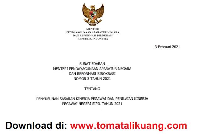 surat edaran se menpan rb nomor 3 tahun 2021 penyusunan sasaran kinerja pegawai dan penilaian kinerja skn pk pns tahun 2021 pdf