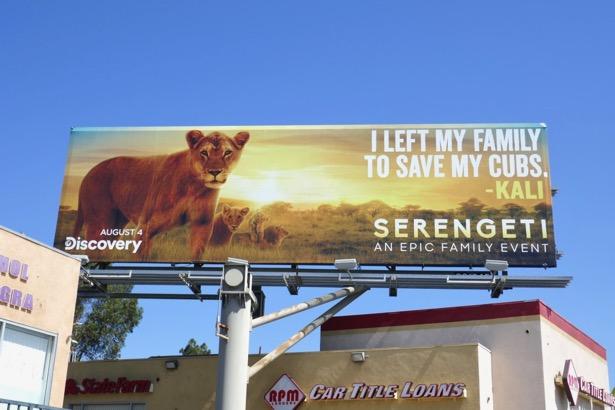 Serengeti series premiere billboard