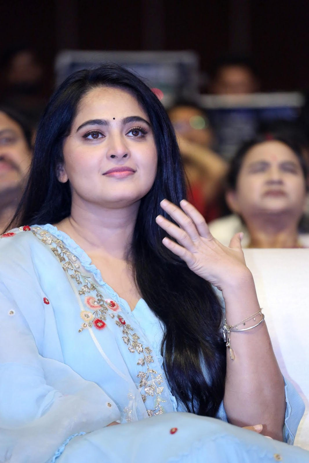 Anushka Shetty's New Photos From HIT Movie Pre Release