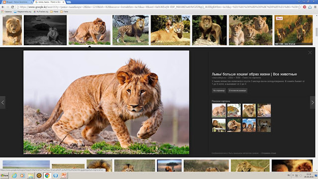 Магия биологии, вопрос почемучки, скрин экрана с картинками львов