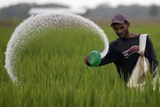 Beras adalah bahan pangan yang memberikan andil terbesar, yaitu 25,35 persen.