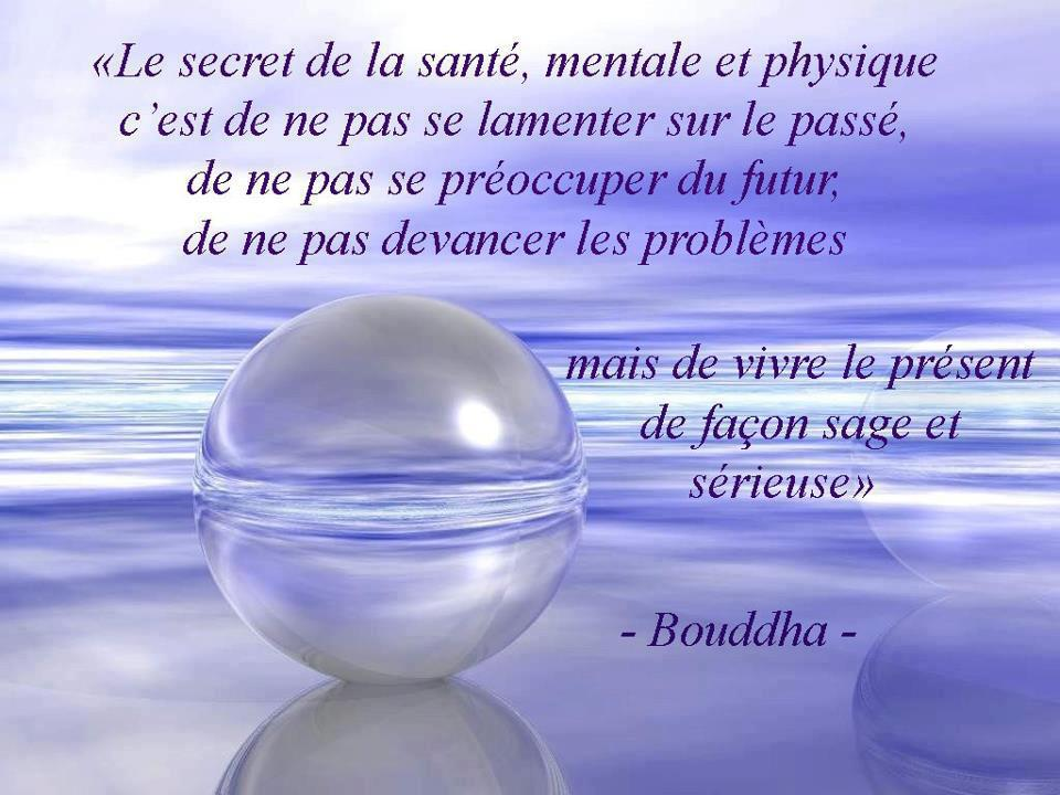 Préférence Citations option bonheur: Citation de Bouddha sur le moment présent CD01