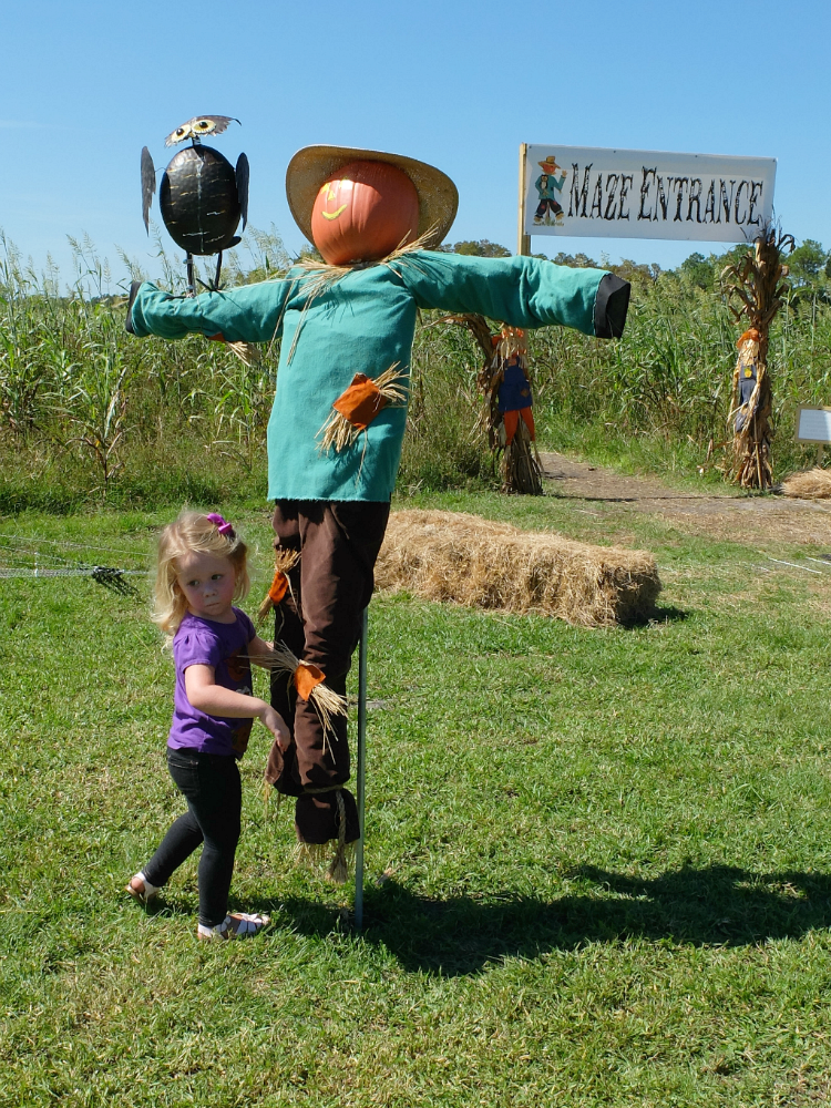 Sweet Turtle Soup: Countdown to Halloween - Partin Ranch Corn Maze