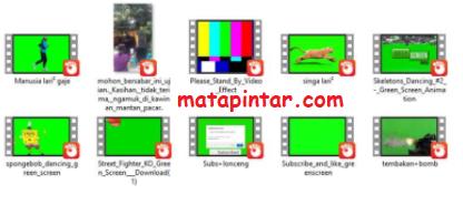 Download Kumpulan Green Screen Meme Video Exe Lucu