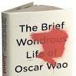 "The Binding String: A review of ""The Brief Wondrous Life of Oscar Wao"