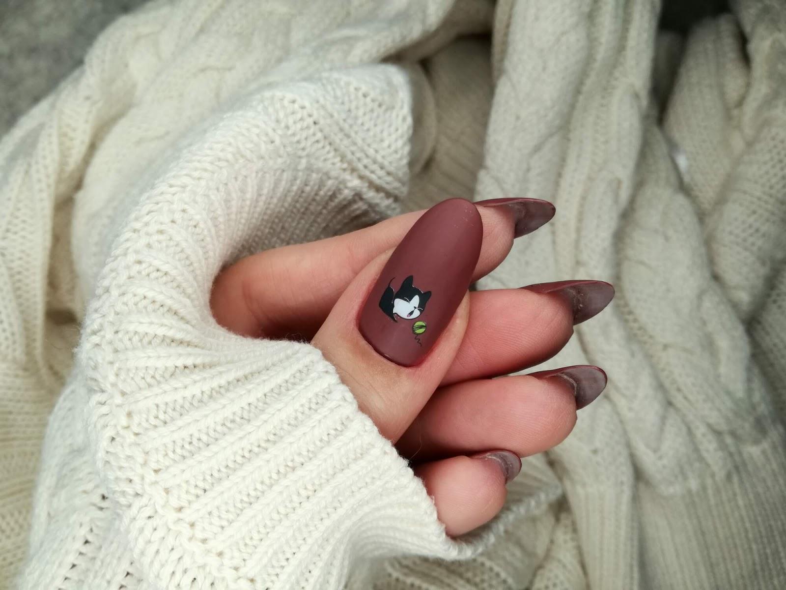 kot - paznokcie