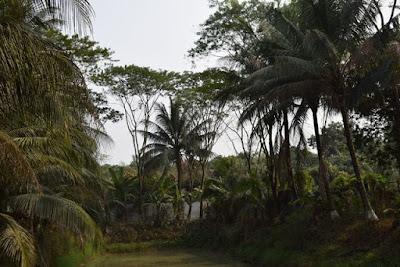 Pubail resort club Gazipur
