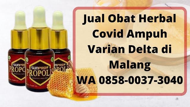 Jual Obat Herbal Covid Ampuh Varian Delta di Malang WA 0858-0037-3040