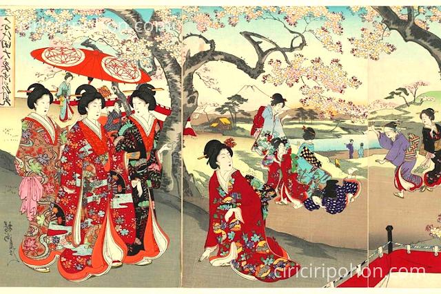 Ciri Ciri Pohon Sejarah Pohon Sakura