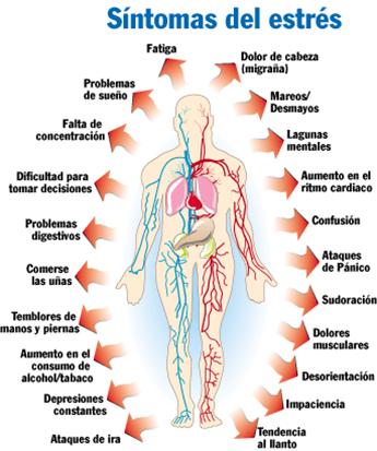Resultado de imagen de estrés y fisiología