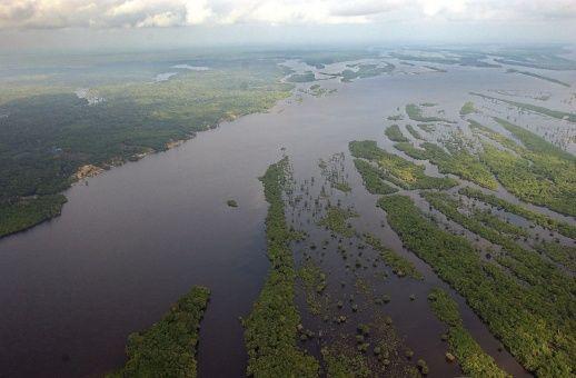 Noruega también bloquea fondos para la Amazonía en Brasil