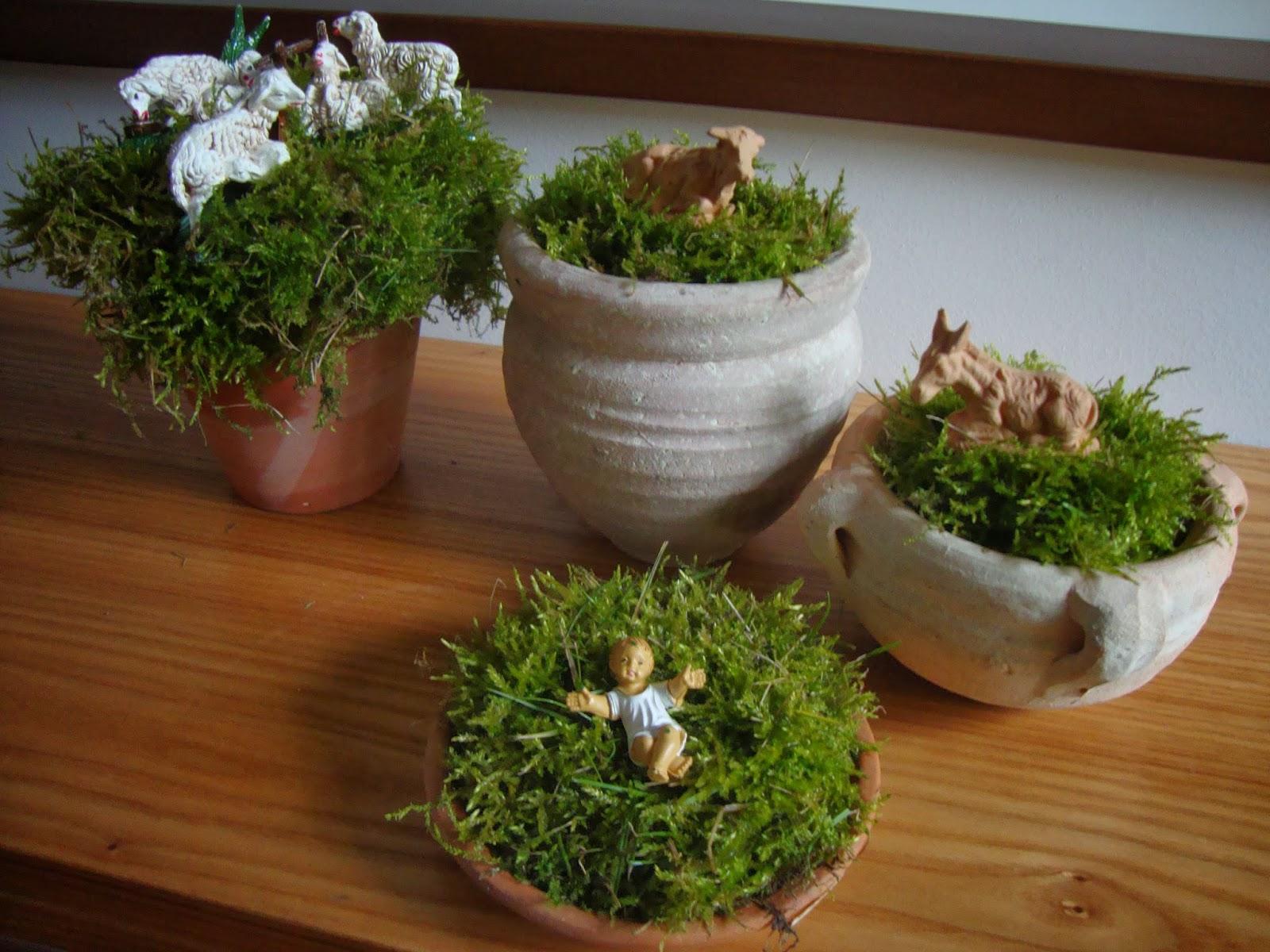 Un piccolo giardino in citt un presepe last minute - Addobbi natalizi da giardino ...