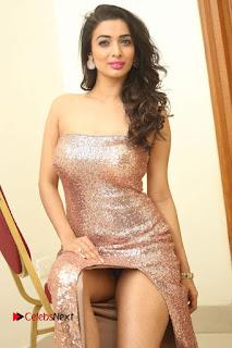 Actress Heena Panchal Pictures in Long Dress at Thikka Audio Launch  0118.JPG