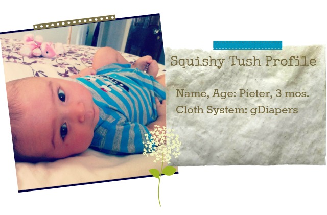gdiaper, cloth diaper, review + user interview