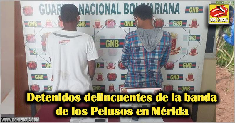Detenidos delincuentes de la banda de los Pelusos en Mérida