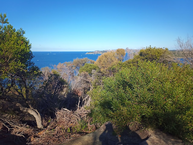 View from Spit to Manly walk