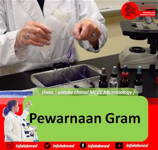 Pewarnaan Gram infolabmed, mikrobiologi
