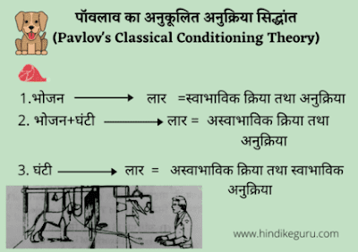 पावलव का अनुकूलित अनुक्रिया सिद्धांत (pavlov theory of classical conditioning in hindi)