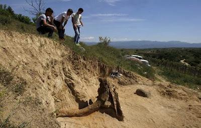 Aπίστευτη ανακάλυψη! Βρέθηκε «γίγαντας» προϊστορικός ελέφαντας 8 εκατομμυρίων ετών στα Σκόπια