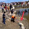Heboh! Hari Raya Idul Adha 1442 H, Warga Aceh Timur Dihebohkan Penemuan Karung Berisi Mayat di Bawah Jembatan