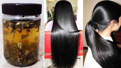 Tips Alami Mudah Menghitamkan Rambut