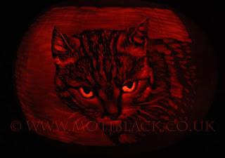 Pumpkin Carving of a Cat