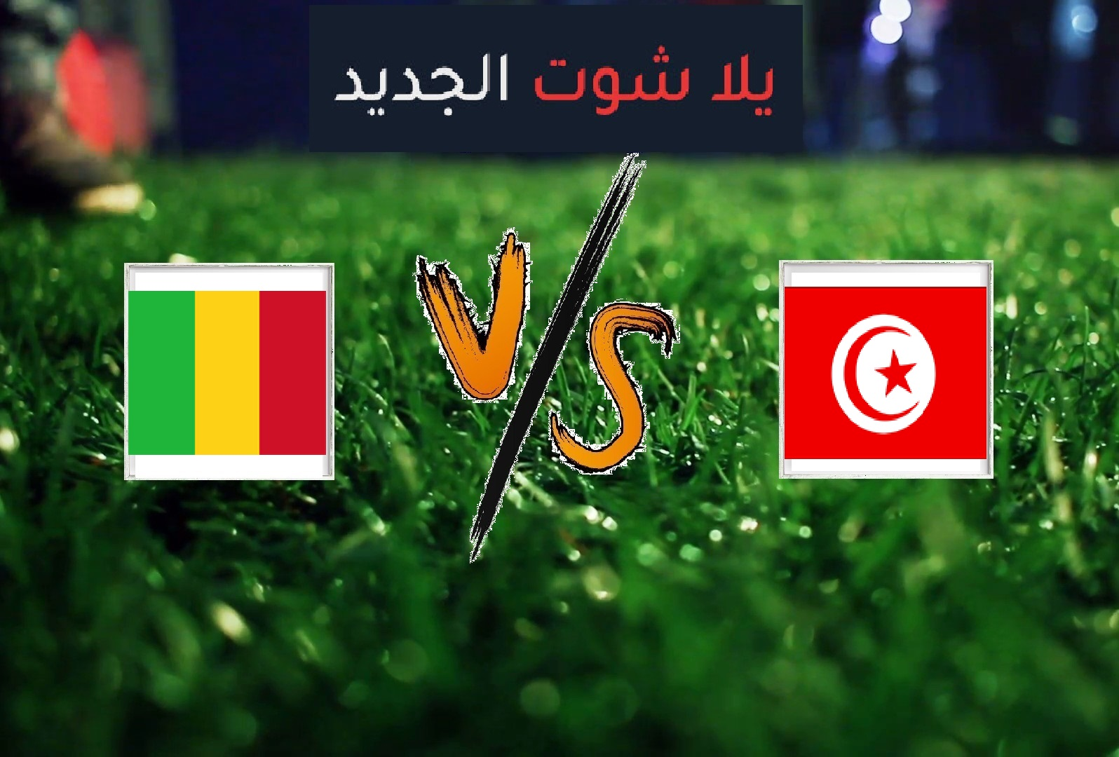 نتيجة مباراة تونس ومالي بتاريخ 28-06-2019 كأس الأمم الأفريقية