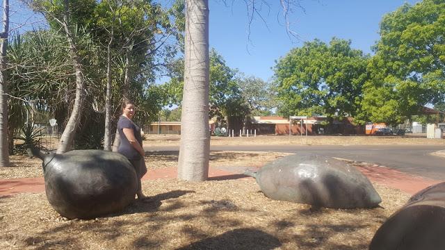 BIG Boab Seeds in Kununurra | Australian BIG Things
