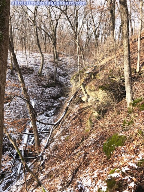 Snow dusting the ravine at Kishwaukee Gorge North Forest Preserve.