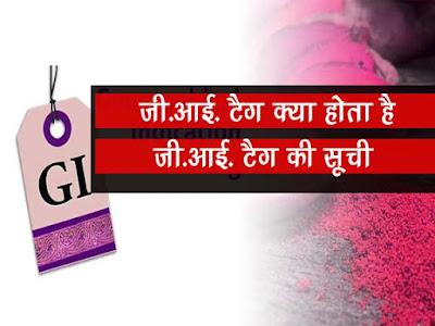 जीआई टैग क्या होता है | भारत के सभी जीआई टैग की सूची | GI Tag Kya Hota Hai