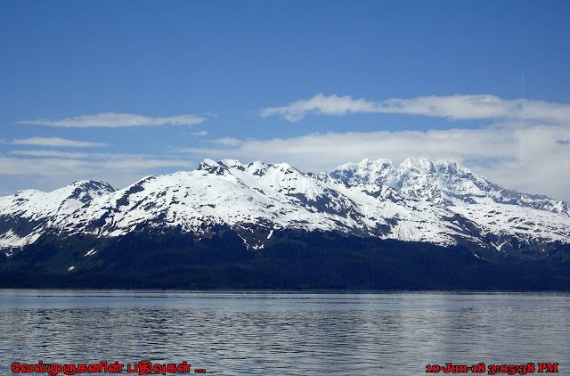 Whittier 26 Glacier Tour Cruise