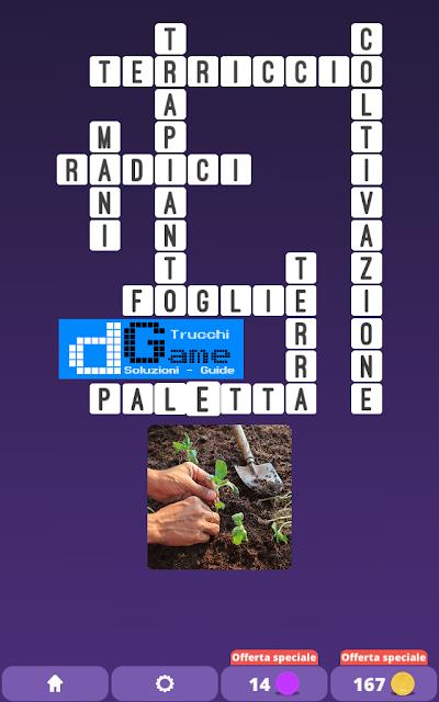 Soluzioni One Clue Crossword livello 17 schemi 9 (Cruciverba illustrato)  | Parole e foto