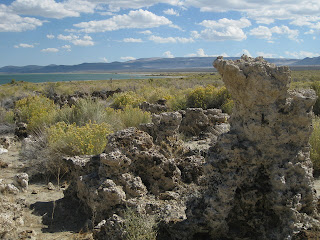 Tufa and Rabbitbrush along the south shore of Mono Lake, California
