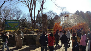 Things To Do In Nami Island - Write Down You Wishes