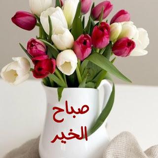 صور صباح الخير و صباح الورد