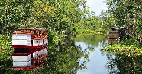 Menyusuri Sungai Sekonyer
