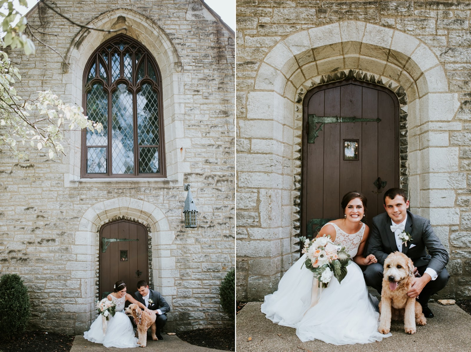 dog stands on wedding dress