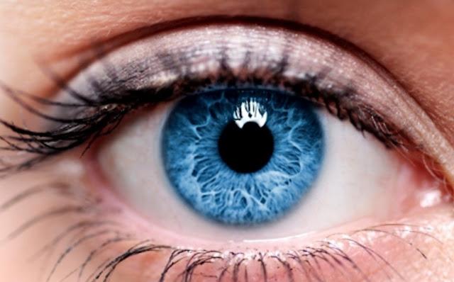 Bagian Bagian Mata, Fungsi dan Beberapa Penyakit Mata