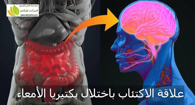 علاقة الاكتئاب باختلال بكتيريا الأمعاء