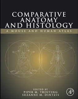 Comparative Anatomy and Histology – A Mouse and Human Atlas