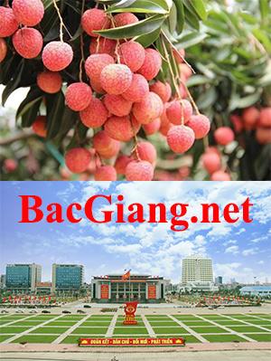 BacGiang.net