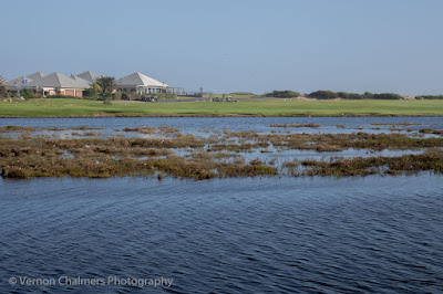 Diep river water level across from the Milnerton Golf