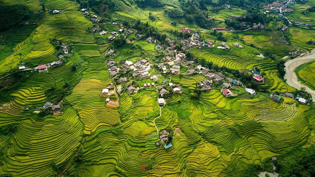 Autumn is the perfect time to visit Sapa