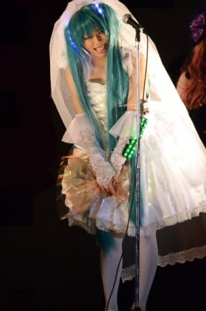 今日はMTM07 ひろことぶたのひとゼミ LED電飾ウェディングドレス
