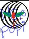 Popi ngo jobs circular 2020