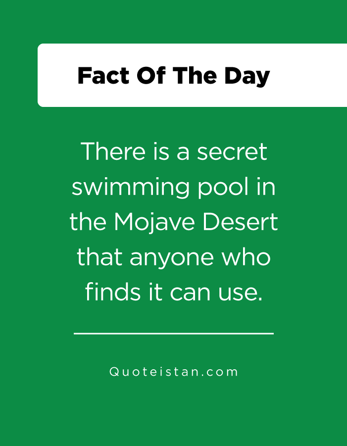 There is a secret swimming pool in the Mojave Desert that anyone who finds it can use.